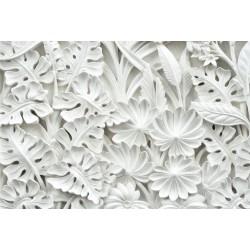 Fototapetas Baltos gėlės