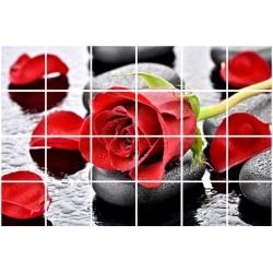 9049 Lipdukas plytelėms Rožė
