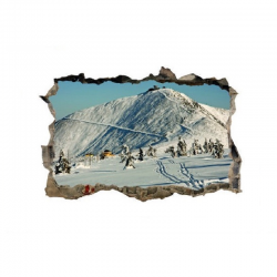 337 sienų lipdukas 3D Žiema